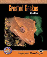new pet CRESTED GECKO BOOK caring for your pet lizard PET CRESTED GECKO