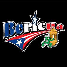 PUERTO RICO CAR DECAL STICKER  BORICUA  with Coqui and Morro  #100