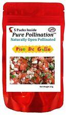 5 Pico De Gallo Variety Seed Pack Kit Heirloom Emergency Survival Garden Food