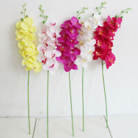 93cm Long Stem Artificial Silk Phalaenopsis Butterfly Orchid Flower - Red