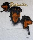 Rottweiler T-shirt ~ Ash ~ Size MED ( 38 ~ 40 )