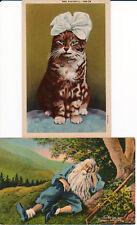 Catskill Mountain New York Rip Van Winkle Mrs. Kaatskill Cat 2 Vintage Postcard