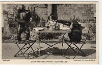 CHIMPANZEES PARTY, WHIPSNADE ZOO: Bedfordshire postcard (C6826).