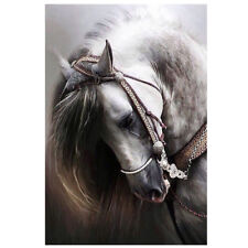 DIY Diamond Embroidery Horse Diamond Painting Cross Stitch Kits D6G4