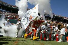 Sebastian the Ibis Miami Hurricanes Orange Bowl Mounted Canvas - original file