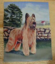 Briard Dog Breed 11 x 15 Outdoor Garden Flag