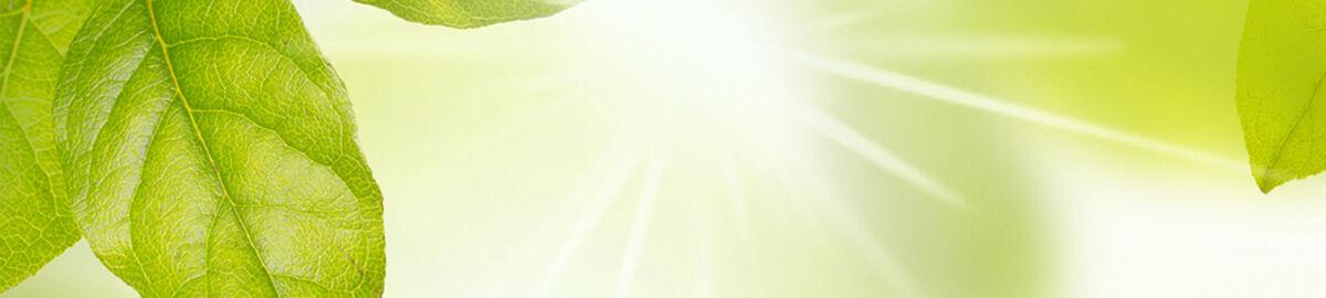 Vitego GmbH - Lust auf Leben