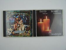 David Young New Age Music CD Lot #1