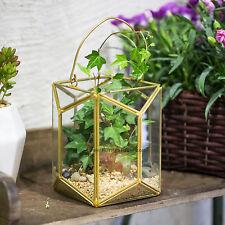 Geometric Glass Terrarium Lantern Tabletop Succulent Plant Hanging Flowerpot