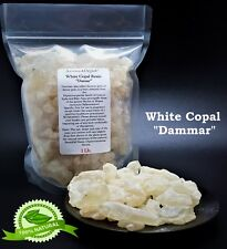 1 Lb White Copal Damar Gum Resin From Dipterocarpaceae tress Gammar Resin 16 oz