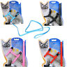solid Cat Puppy Adjustable Harness Collar Nylon Leash Lead Safety Walking Rope