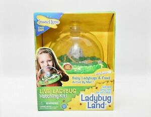 NEW Lady Bug Land Live Ladybug Hatching Kit