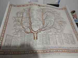 CHASSIDIM BESHT FAMILY TREE POSTER warsaw 1927 BOBOV GUR BELZ CHABAD LELOV BOYAN