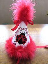Personalized Girls Toddler Birthday Party Hat Keepsake Celebrate Lady Bug