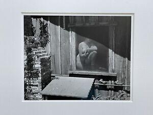 RARE! Original SIGNED Print Edward Weston Nude 1943 Gelatin silver Print c 1980s