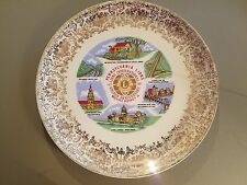 Pennsylvania Lions District 14-100 Year Anniversary Plate 1917-1967
