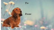 Dachshund Longhaired Dog Self Adhesive Gift Labels Design No. 4 by Starprint