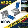 H7 Headlight Light Bulbs Xenon White 100w Halogen Bright 499 Hid Headlamp 12v