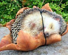 Hedgehog in Leaf Animal Vivid Arts Garden Ornament New £12.99