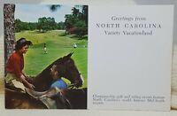 Variety Vacationland North Carolina Vintage Postcard