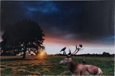 LED Bild Leinwand 1 LED warmweiß Sonnenuntergang 60 x 40 cm H-Hirsch