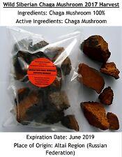 WILD Siberian Chaga Mushroom 11.02 Lbs (5 kgs) 2017 Harvest; Inonotus obliquus