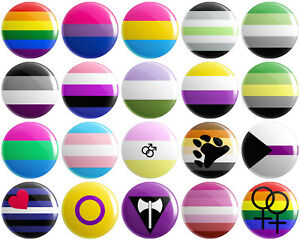 LGBTQ+ Pride Flags BUTTON PIN BADGE 25mm 1 INCH Lesbian Gay Gender Bisexual LGBT