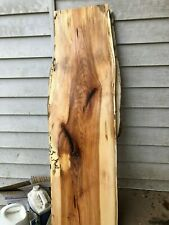 Spalted Large and Thick Hickory natural edge slab