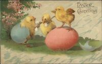 Easter - Chicks Eggs & Pussy Willows c1910 Embossed Postcard ASB