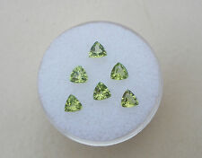 6 Peridot Trillion Loose Gems 4mm each