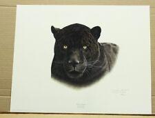 Black Jaguar by Charles Frace Wildlife Coa Tennessee Artist Big Cat Exotic Cat