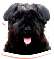 Bouvier des flandres magnet magnet fridge custom photo text + n2 slate