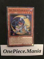 Yu-Gi-Oh! Chat Bleu De Clair De Lune LED4-FR050 1st
