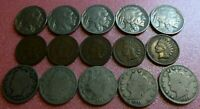 15 Coin Collection Liberty V Nickel  Buffalo Nickel Indian Head Cent   #15BVI