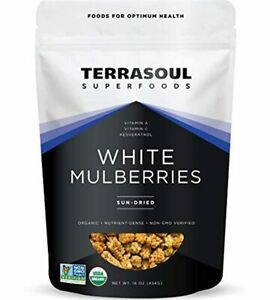 Terrasoul Superfoods Organic Sun-dried White Mulberries 1 Lb Low Glycemic