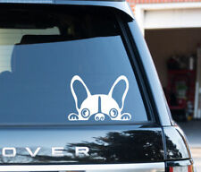 French Bulldog dog fun decal window sticker French Bull Dog Owners Lover Walkers