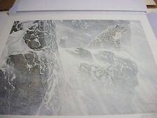 Snow Leopard  by  Robert Bateman  1987