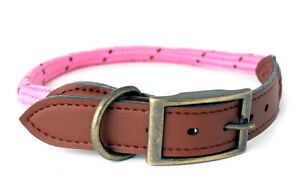 Douglas Paquette MOUNTAIN ROPE Hot Pink Braided Nylon & Leather Dog Collar