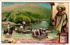 6 Cards c1908 Chili Santiago Selling moté River Maipo Salpeter Mines La Cueca