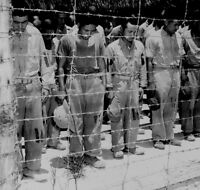 Japanese POW's Guam 1945 Prisoners B&W WW2  Photo WWII World War Two
