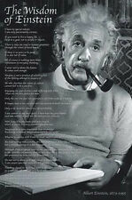 THE WISDOM OF ALBERT EINSTEIN 22 Quotations Inspirational POSTER