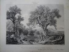 HOSTEIN (1804-1889) LITHO ORIGINALE VUE THONON LAC LEMAN HAUTE SAVOIE CHABLAIS