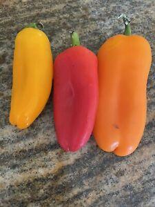 Capsicum Mix X50 Seeds Gardening