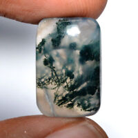Cts. 15.00 Natural Beautiful Moss Agate Cab Fancy Cabochon Loose Gemstone
