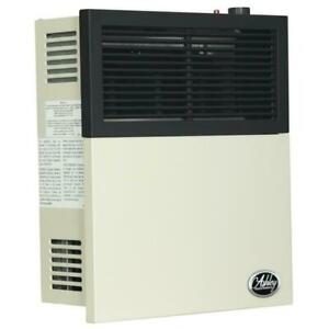 Ashley Hearth Products Direct Vent Wall Heater DVAG11L 11, 000 BTU