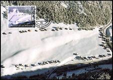 Liechtenstein 2004, 85R Turismo, Bruto-Teg máxima tarjeta #C38828