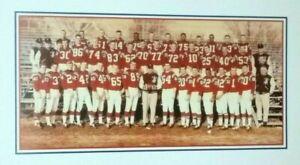 1960 Boston Patriots Team Photo Poster  Gino Cappelletti - Babe Parilli - AFL