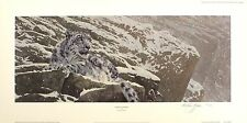 "ANTHONY GIBBS ""Snow Leopard"" big cat mountain SIGNED! SIZE:32cm x 65cm NEW RARE"
