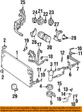 GM OEM Air Conditioner-Evaporator Tube 19244605