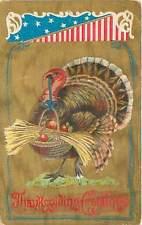Thanksgiving Greeting Postcard Patriotic Turkey Oldtown Maine Postmark 1909